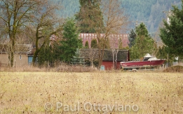 Buxton Oregon home and landscape photo by Paul Ottaviano