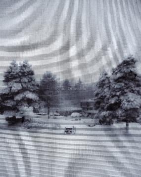 snow day photo Beaverton Oregon